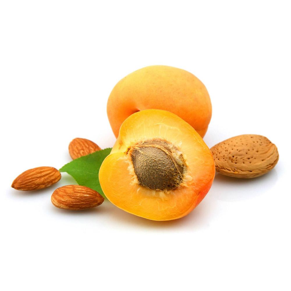Горькие ядра косточек абрикоса оптом от Samrin Trade